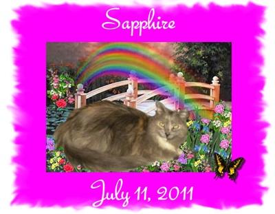 Rest in Peace Sweet Sapphire