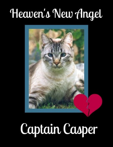 Run Free Captain Casper