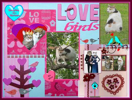 LoveBirdsScylla430