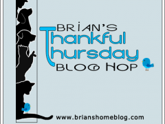 Thankful Thursday Blog Hop