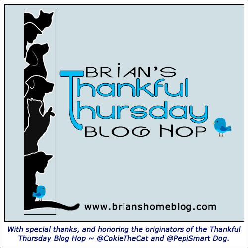 TTHop Thankful Thursday Blog Hop