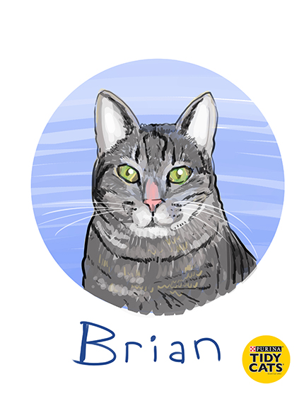 Brian's Home, adopt cats, we deserve it!