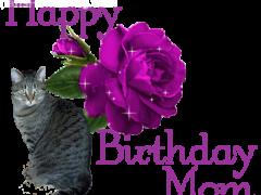 Happy Birthday Mom - Brian's Home, adopt cats, we deserve it!