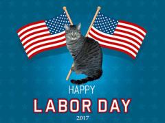 mancat monday labor day 2017 - Brian's Home, adopt cats, we deserve it!