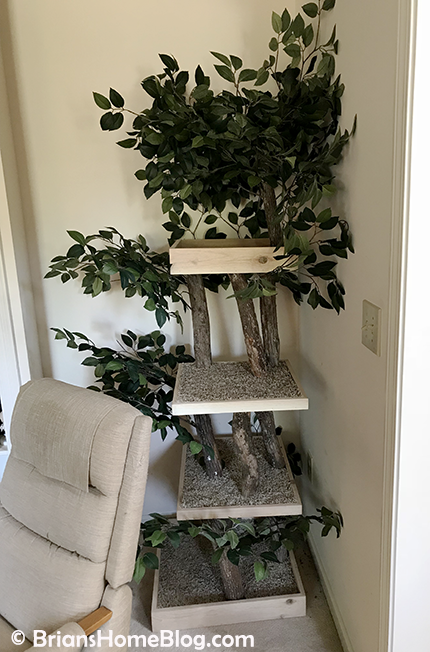 thankful thursday blog hop tree 02 04262018 - Brian's Home, adopt cats, we deserve it!