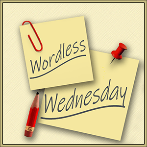 WordlessWed-Blog-Hop-Badge-300-px