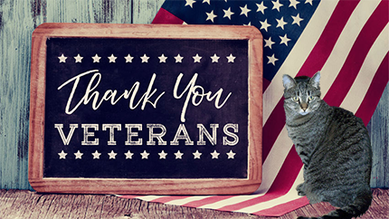 thank you veterans 2018