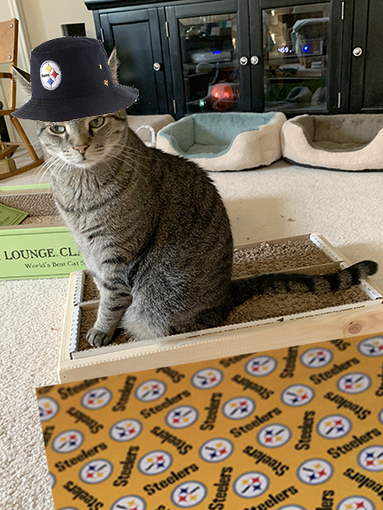 mancat monday steelers brian 04012019