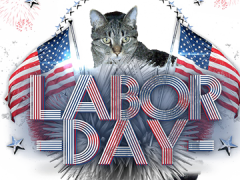 mancat monday labor day brian 09022019