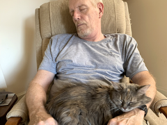 wordless wednesday dolly dad 10022019