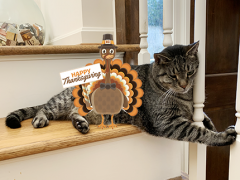 thankful thursday blog hop thanksgiving brian 11282019