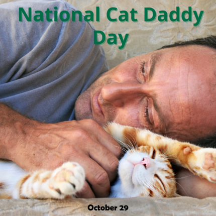 10.29-National-Cat-Daddy-Day-768x768