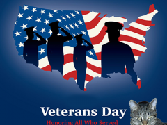 wordless wednesday veterans day 2020 02