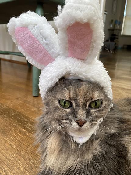 sunday selfie easter bunny dolly 04042021