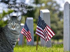 mancat monday memorial day brian 03 05312021